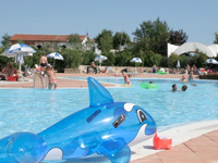 Holiday park with outdoor swimming pool