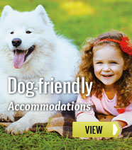 Dog-friendly accommodations