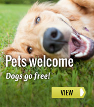 Holiday cottages: dogs go free!
