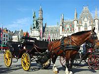 Holiday parks near Bruges