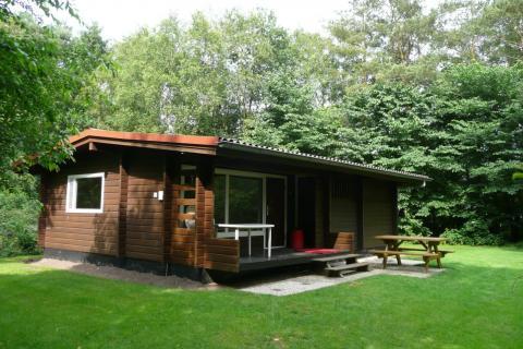 6-person cottage