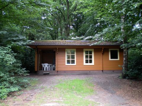 4-person cottage Englenburg