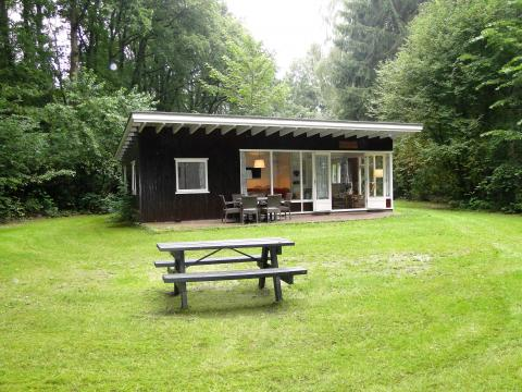 8-person cottage Wildenborch