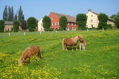 Bungalowpark Landsrade
