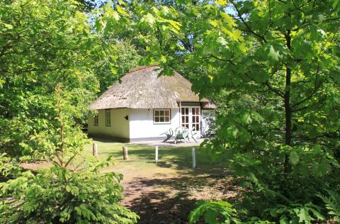 4-person cottage Stuif Hoeve 4