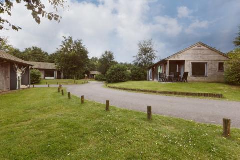 6-person cottage Damhert