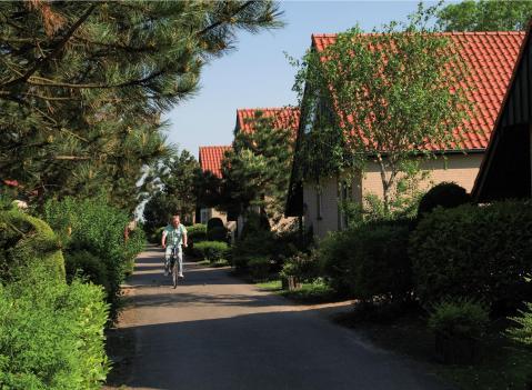 Roompot Kustpark Klein Poelland