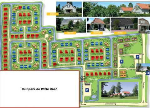 Duinpark De Witte Raaf